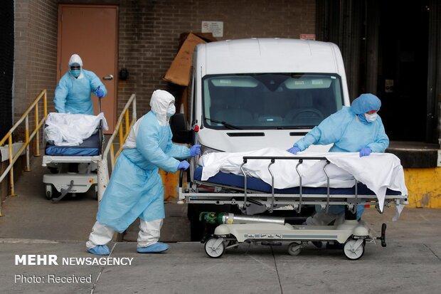 تلفات کرونا در نیویورک آمریکا بیش از 4 هزار نفر شد